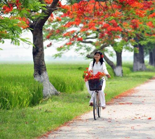 Hoa Đào và người đẹp ngày Xuân